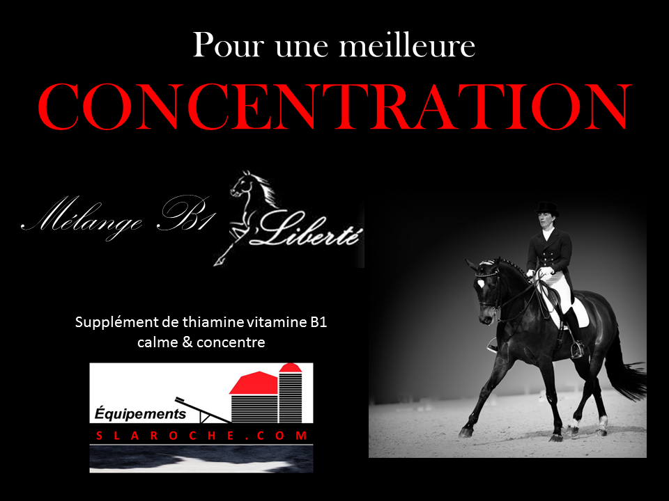 supplement-cheval_supplement-vitamine_fortifiant_moulee-cheval_concentration-cheval_performance-cheval
